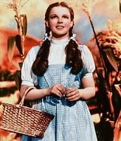 Dorothy Costume 1